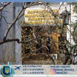 دانشگاه ملی رادیو خارکف
