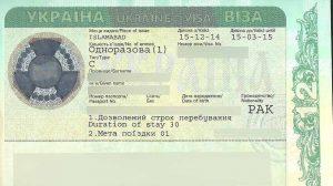 ویزا تیپ D