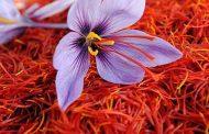صادرات زعفران ایران به اوکراین